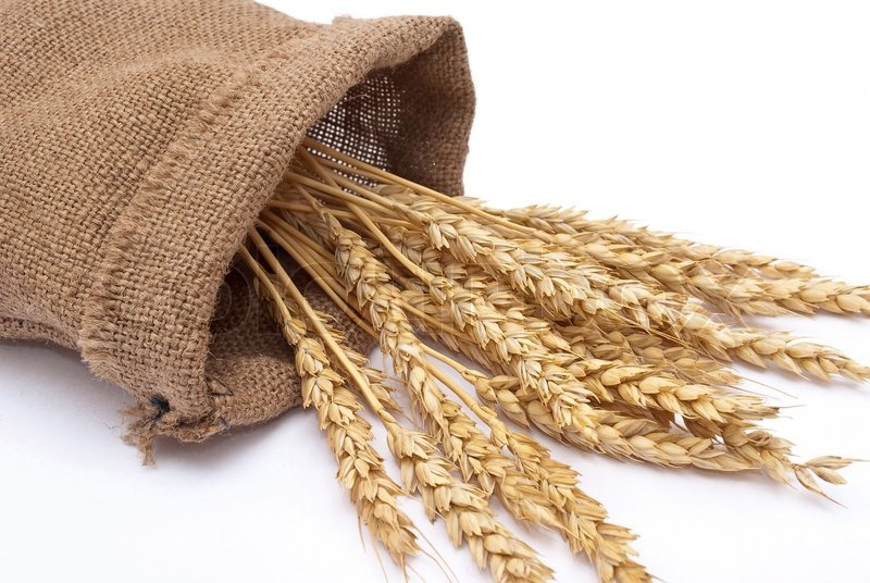 wheat sack wall decor - 800×536
