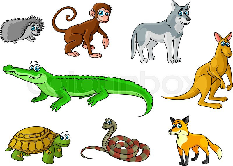cartoon forest and jungle animals characters with cute crocodile fox monkey hedgehog wolf turtle snake kangaroo for childish decor and education - Images Cartoon Animals