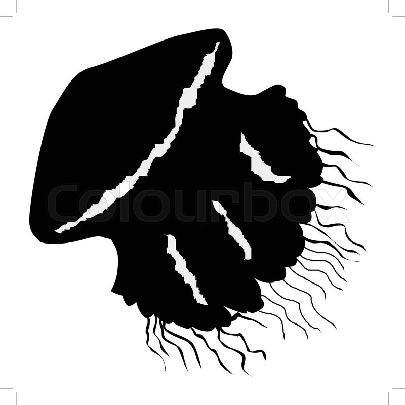 Silhouette of jellyfish | Stock Vector | Colourbox  Silhouette of j...
