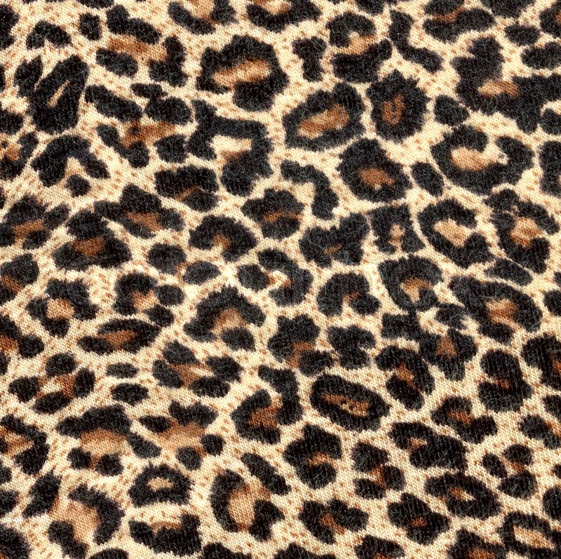 Leopard Background on Stock Image Of  Cheetah  Print  Background