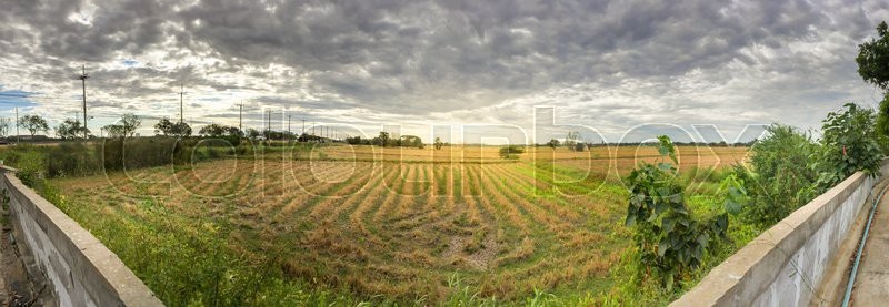 Panorama and hdr grass field in the cloudy background stock panorama and hdr grass field in the cloudy background stock photo altavistaventures Gallery