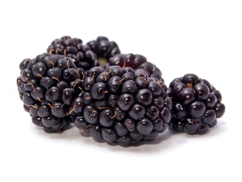 Stock image of 'fruit, blackberry, black'