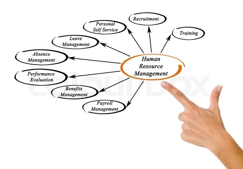 human resources management 4 essay