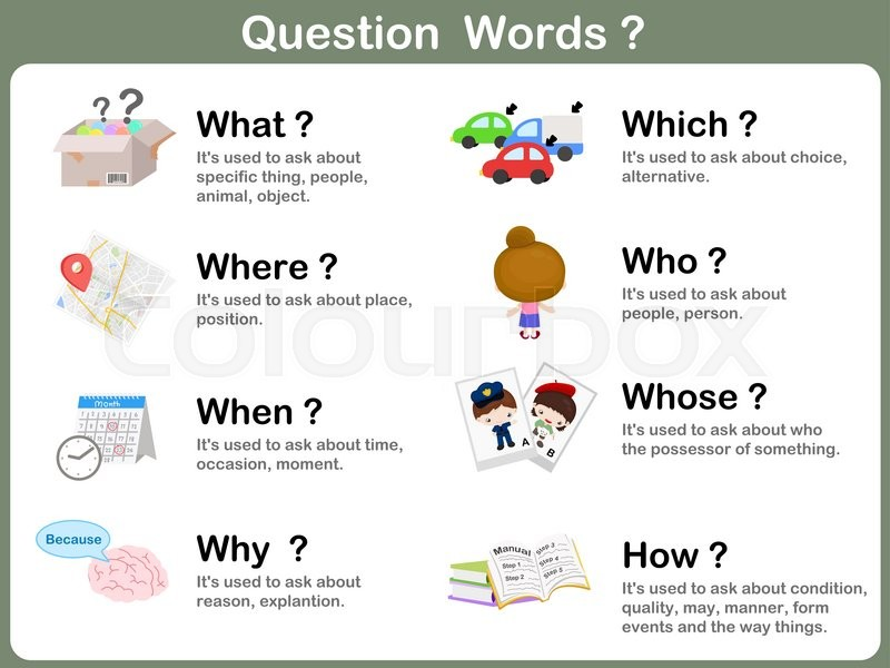 worksheet question word flashcards with picture for kids stock vector colourbox