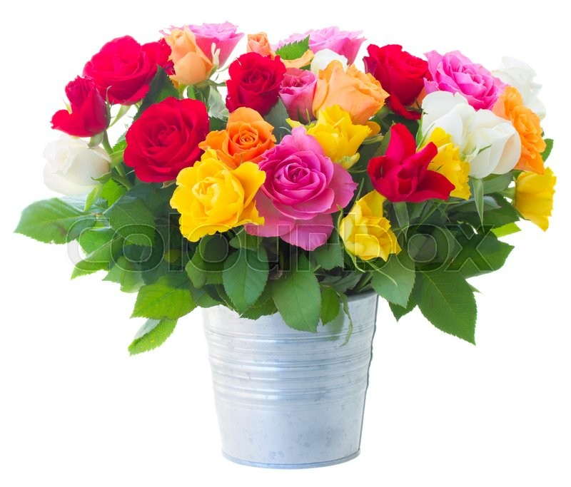 Bunch of pink yellow orange red and white roses in metal pot bunch of pink yellow orange red and white roses in metal pot isolated on white background stock photo colourbox mightylinksfo
