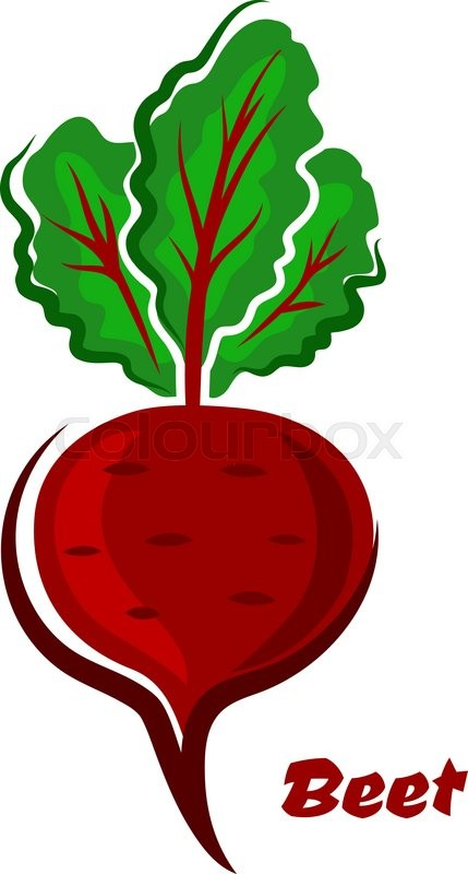 Fresh cartoon beet or beetroot vegetable with green leaves ...