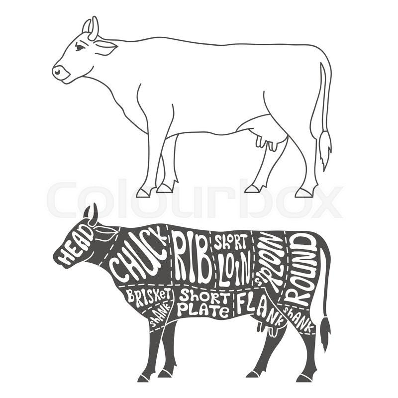 Beef Parts Diagram