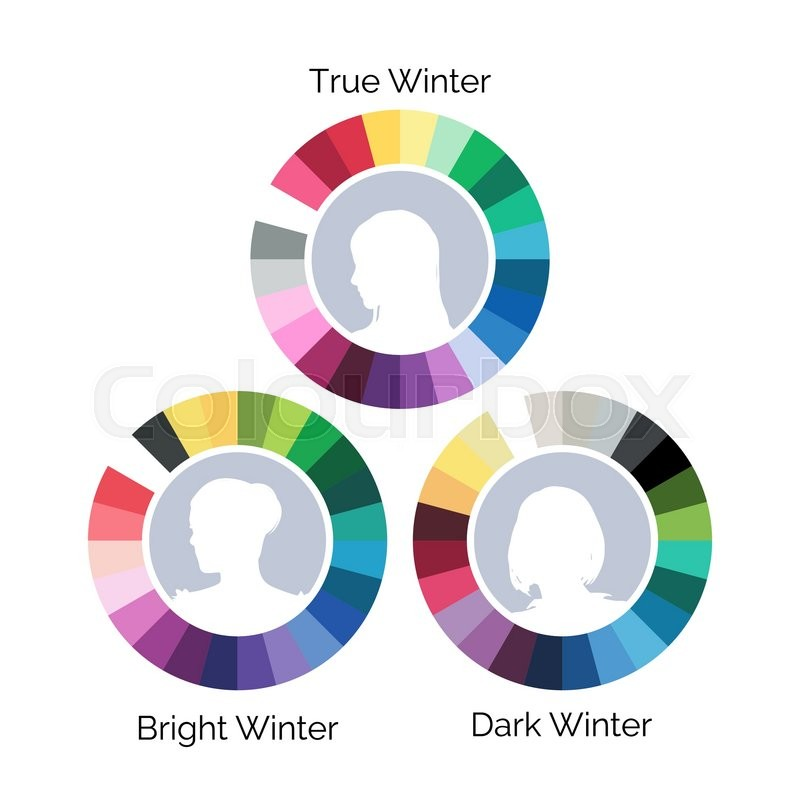 Winter Type Color Palettes Three Variations Vector Illustration