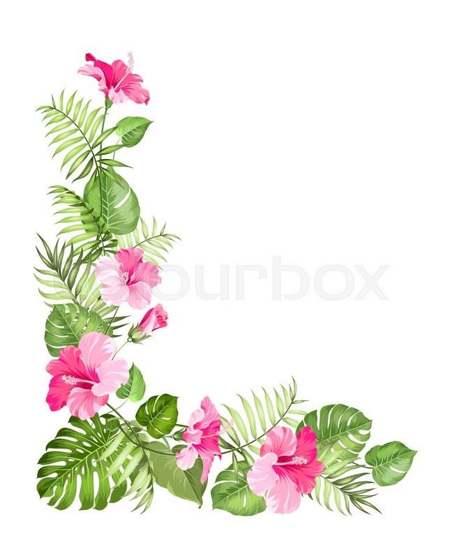 Tropical flower garland isolated over white background. Vector ...
