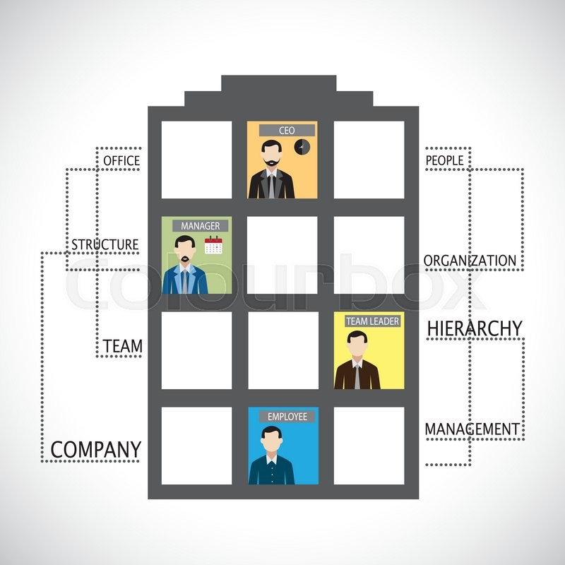Office Company Structure Of Employees Stock Vector Colourbox
