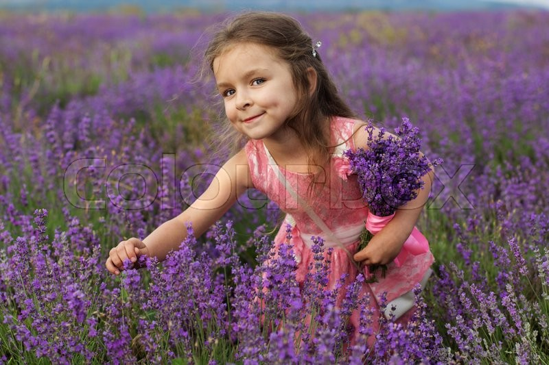 Happy cute little girl is in a lavender field holding bouquet of ...