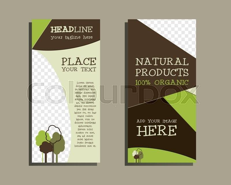 Vector organic Brochure Flyer design       Stock vector
