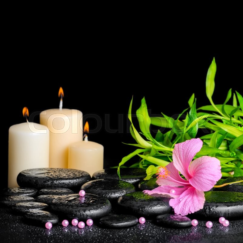 Stock image of 'Beautiful spa composition of pink hibiscus flower, twig bamboo, beads and candles on zen basalt stones with drops, closeup'