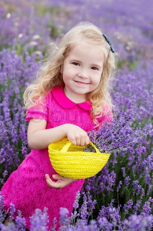 Stock image of 'happy little girl is in a lavender field holds a basket of flowers'