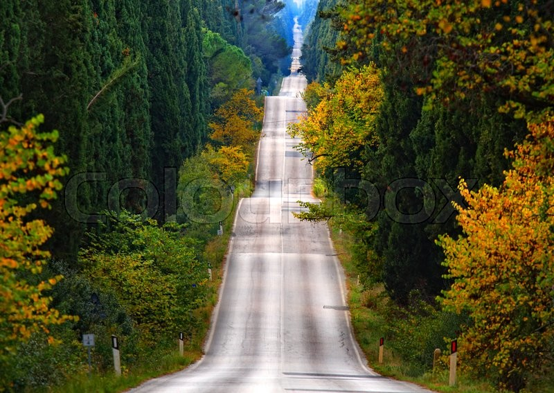 Stock image of 'The road of cypresses in Tuscany'
