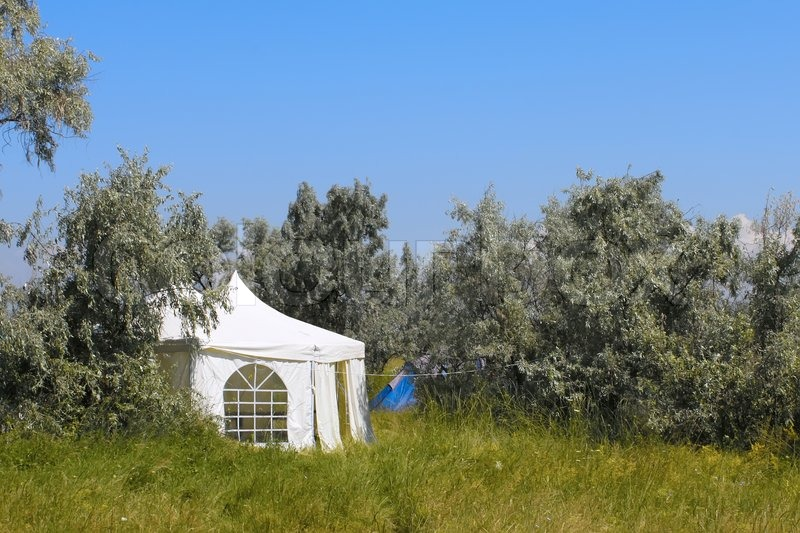 Large white tent among wild olive trees. Kinburn Spit near Ochakiv Ukraine stock photo & Large white tent among wild olive trees. Kinburn Spit near ...