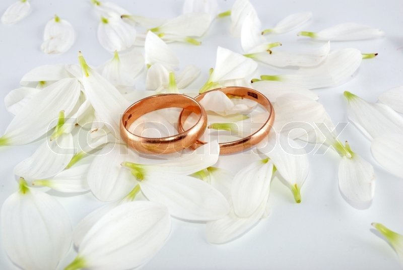 Wedding rings flowers  Wedding rings and flowers composition. White petals. | Stock Photo ...