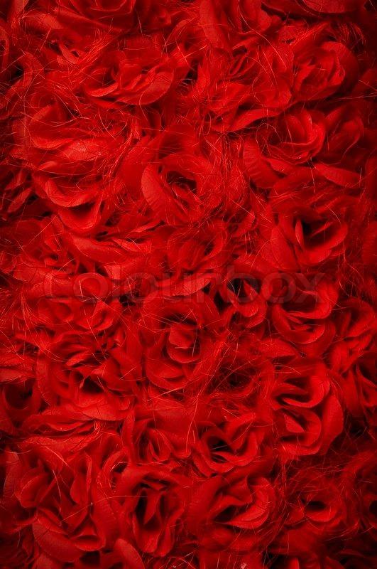 rote rosen hintergrund viel rote blumen stockfoto. Black Bedroom Furniture Sets. Home Design Ideas