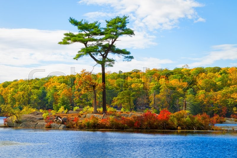 Stock image of 'Fall landscape with the forest lake.'