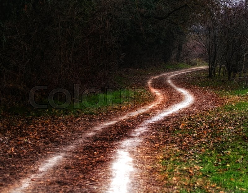 Stock image of 'White country road and red leaves in autumn'