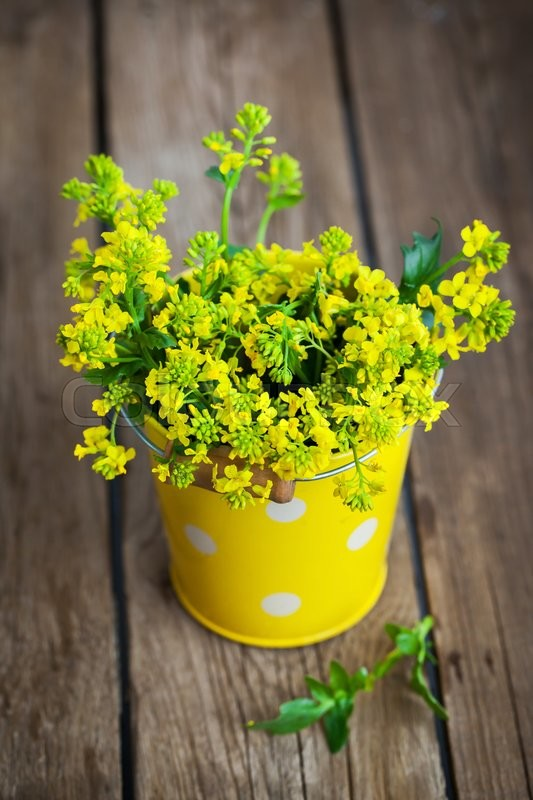 Stock image of 'Beautiful summer yellow flowers in a bucket on wooden table'