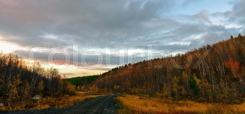 Stock image of 'Empty road through autumn gold  colored forest taiga hills'
