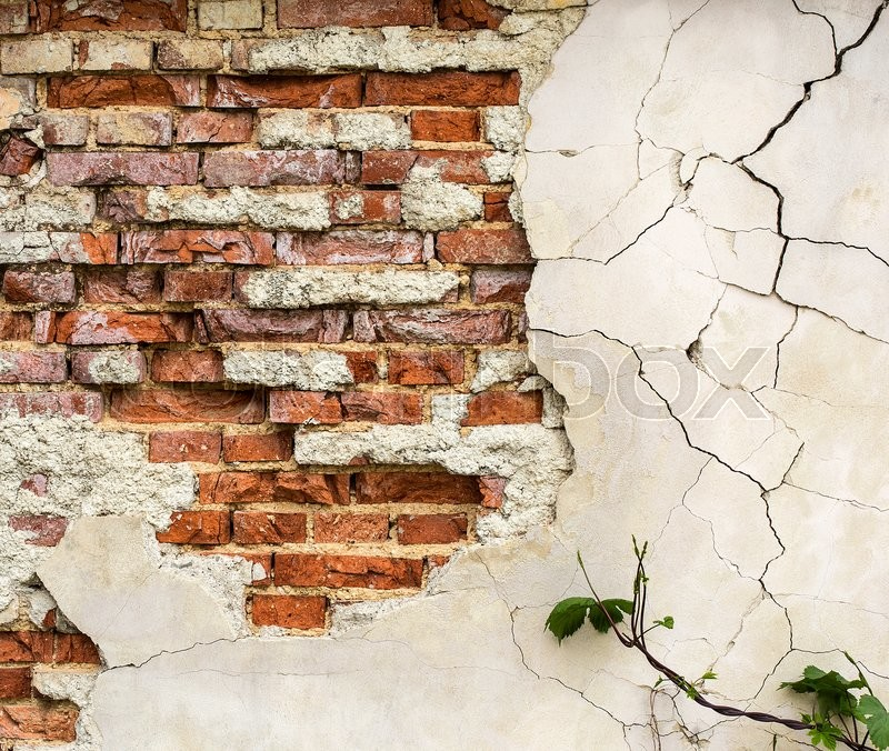 Stock image of 'Cracked wall texture with bricks and plant'
