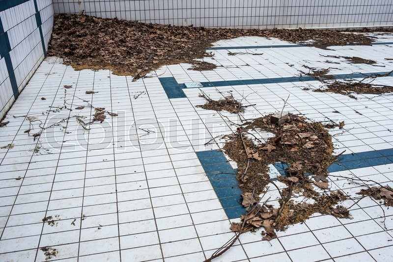 Stock image of 'Dirty corner in abandoned swimming pool.'