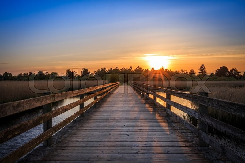 Stock image of 'Bridge crossing sea lake ocean water at sunset sunrise with trees and forest'