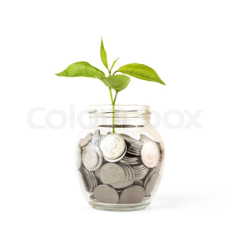 Stock image of 'Sprout growing on glass piggy bank  isolated on white'