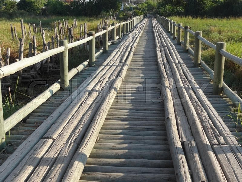 Stock image of 'wooden bridge seen at the Moremi Game Reserve in Botswana, Africa'