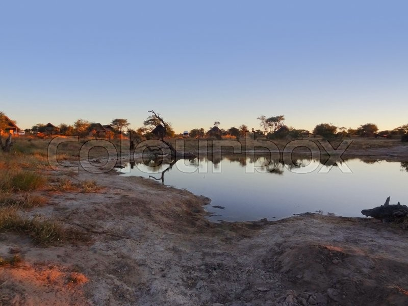 Stock image of 'the Elephant Lodge in Botswana at evening time'