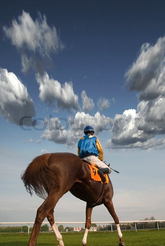 Stock image of 'Rider on horseback in the beautiful slow trot around the hippodrome'