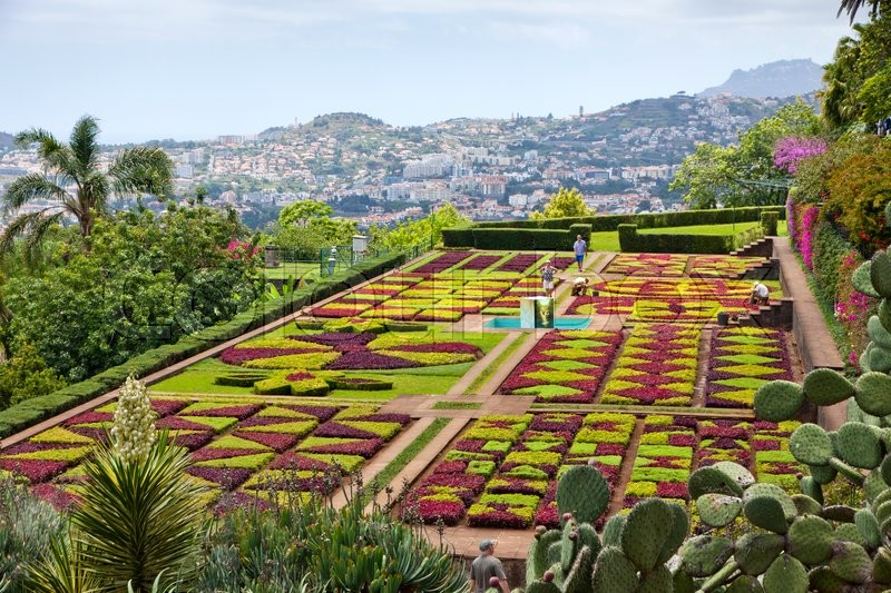 Stock image of 'Tropical Botanical Garden in Funchal city, Madeira island, Portugal'