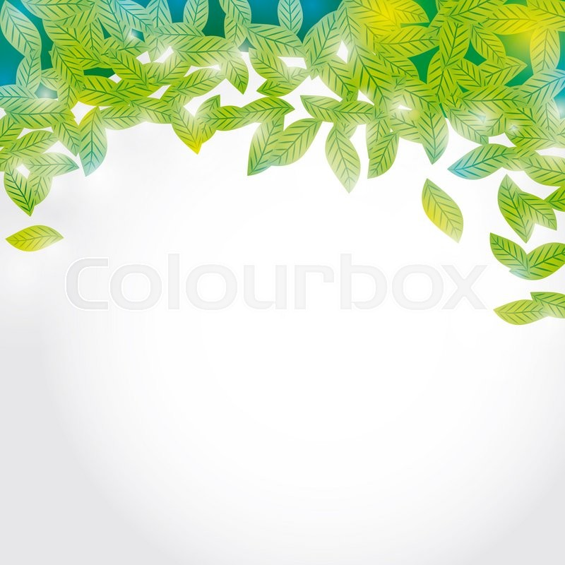 Stock image of 'Summer branch with Fresh green leaves on white background.  '