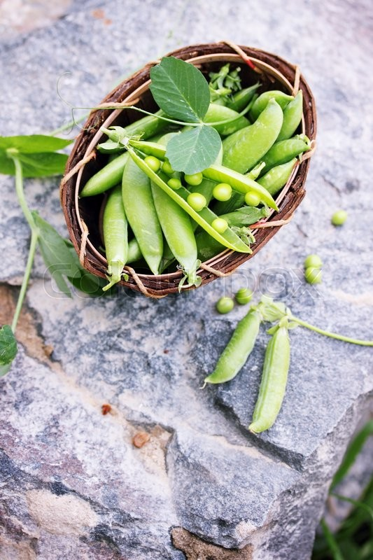 Stock image of 'Green peas in a basket made of birch bark'