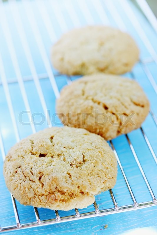 Stock image of 'oatmeal cookies cool down on a metal grid'