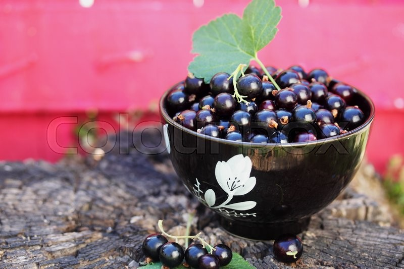 Stock image of 'black currants in the black bowl on a wooden stump'