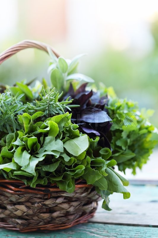 Stock image of 'Wicker basket with fresh herbs'