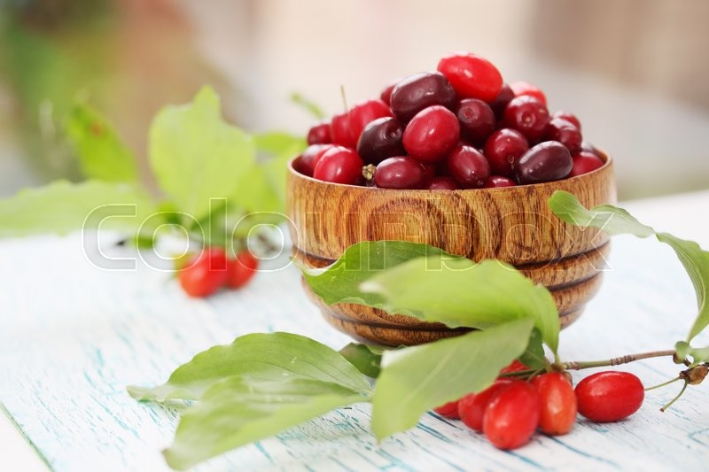 Stock image of 'fresh dogwood in a wooden bowl on the table'