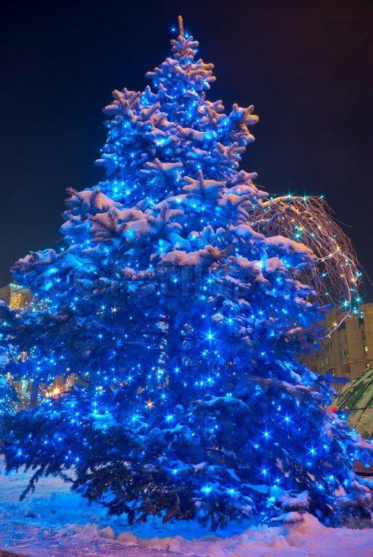 weihnachtsbaum beleuchtet von einem scheinwerfer bei nacht. Black Bedroom Furniture Sets. Home Design Ideas