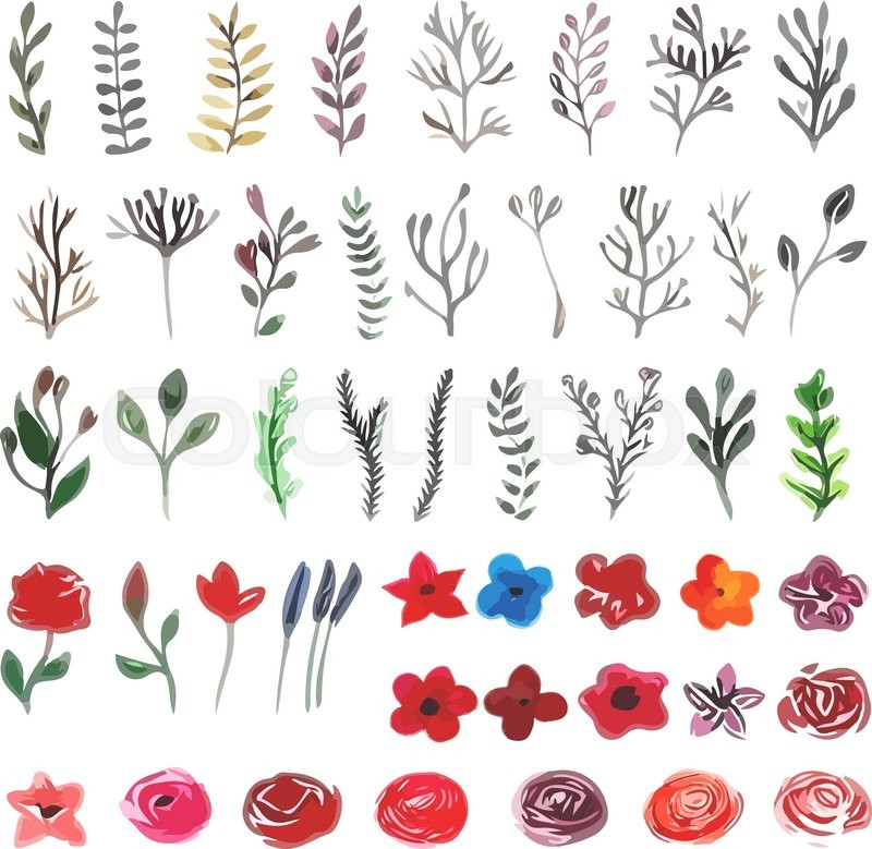 Vector floral set colorful floral collection with leaves and vector floral set colorful floral collection with leaves and flowers drawing watercolor spring or summer design for invitation wedding or greeting cards stopboris Image collections