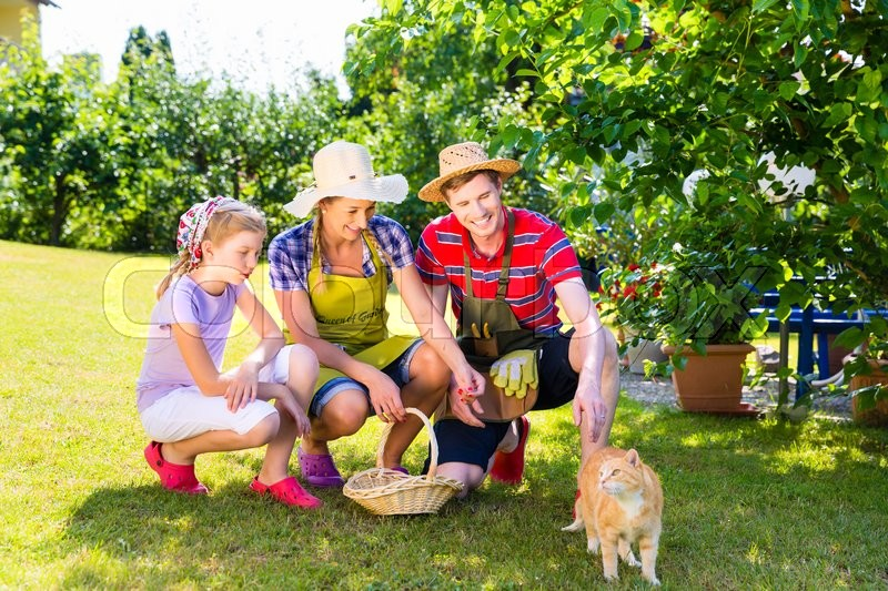 Family with cat gardening in garden, stock photo