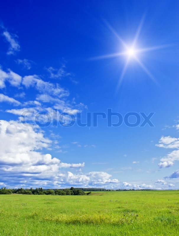 Summer Landscape With Cloudy Sky Green Grass And Trees