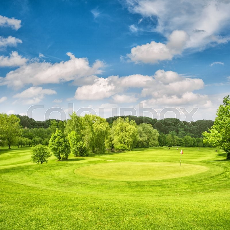 Golf course. Spring field with green grass, trees and cloudy blue sky, stock photo