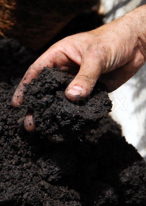 Black Soil Stock Photo Colourbox