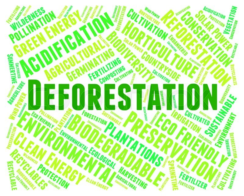 Deforestation Word Indicating Cut Down And Woodland, stock photo