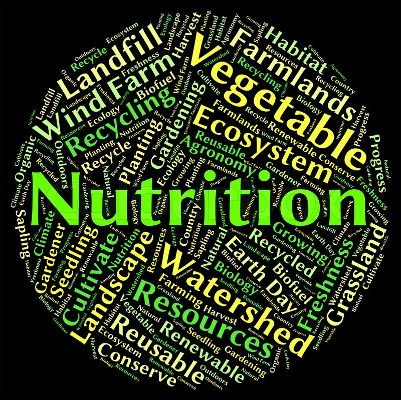 nutrition word meaning text diets and nutrient stock photo colourbox