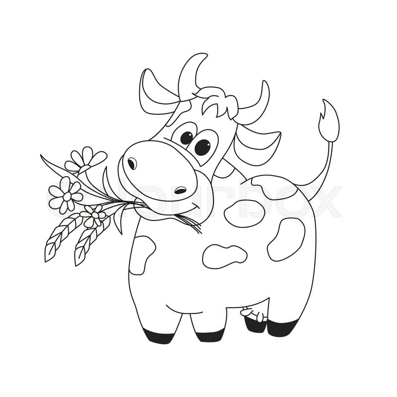Outline illustration of cute cow with flowers cartoon outline outline illustration of cute cow with flowers cartoon outline illustration of animal character for coloring book brilliant card for children stock mightylinksfo