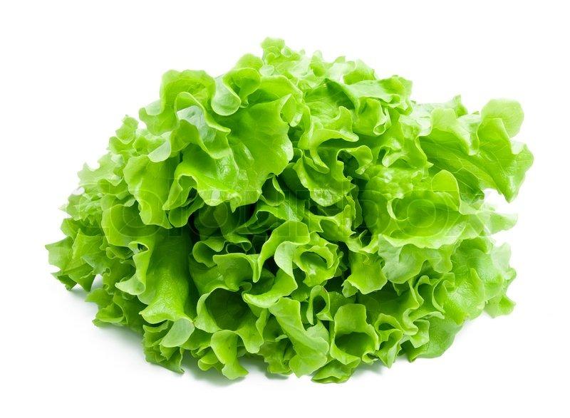Fresh green Lettuce salad isolated on white background ...
